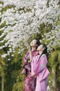 Woman in Kimono at Blossoming Tree