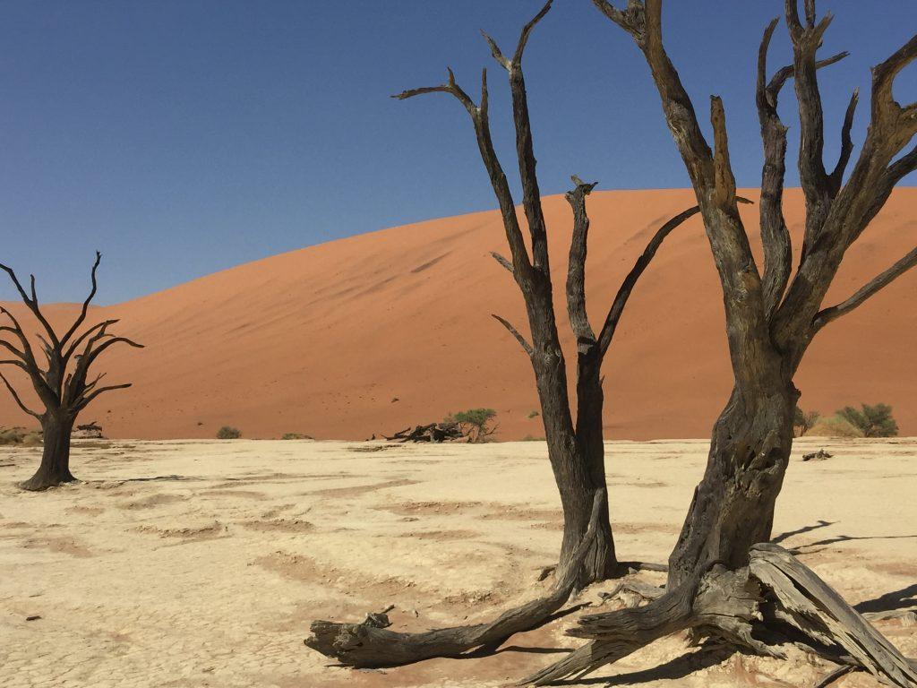 Namibie (3)