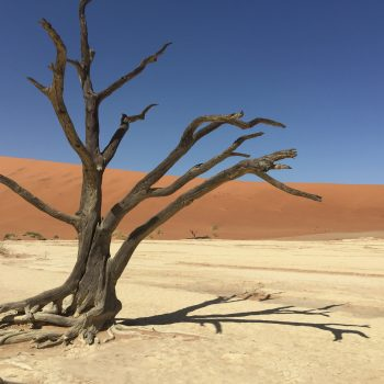 Namibie (4)